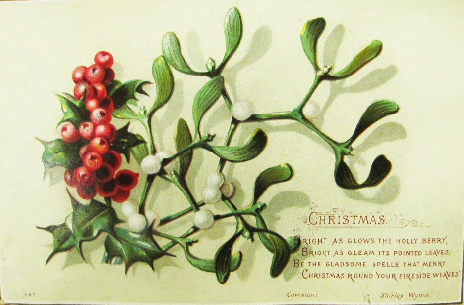 holly_christmas_card_from_nli